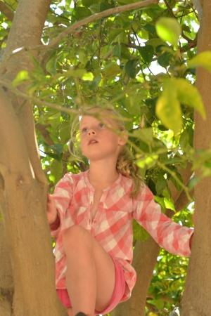 kinderopvang kinderhuis de fuut natuur bos